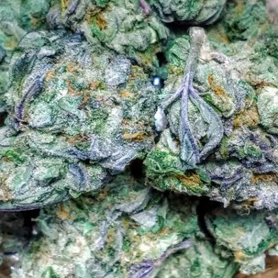 Buy Granddaddy Purple online